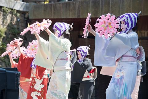 さくら祭-5