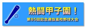 熱闘甲子園2013!春の高校野球特集