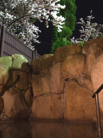Night View of Ryuusenkaku Private Outdoor Baths